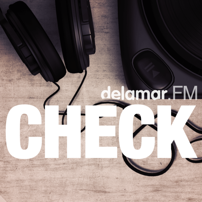 delamar Check Logo